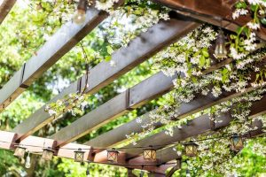 uses of wood in landscaping